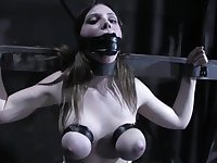 Welcome To The Pain and Torture Room - BDSM at ANALDIN